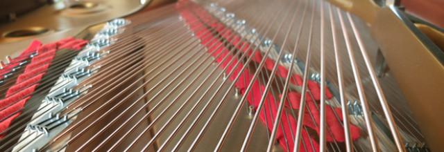 D'où naissent les instruments (3/3) – L'Enchanteur