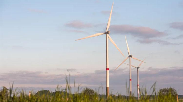 Champ d'éoliennes à Hambourg Crédits Getty